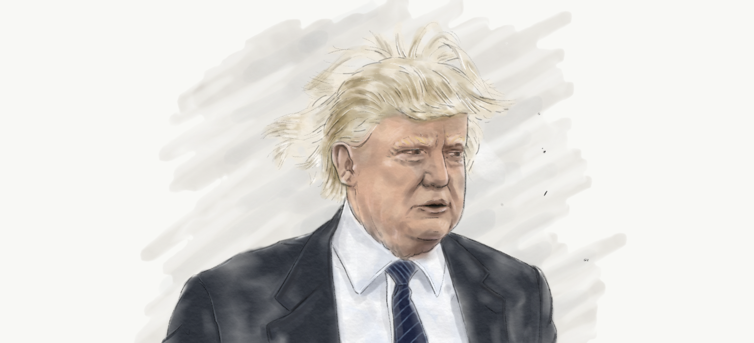 my trump laws of physics defying hair illustration